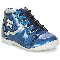 Shina,Bottines / Boots,Shina